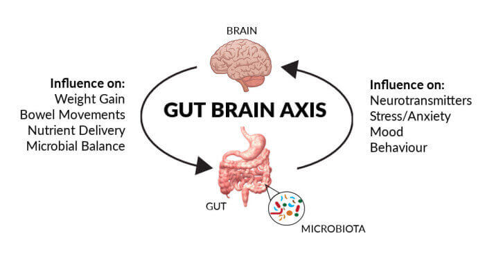 A slide showing how the gut affects mental health